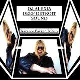 Dj Alexia: Classic Deep Detroit Sound - (Terrence Parker Tribute)