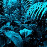 Di PePPer 012 -mp3 - Hunting