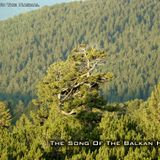 Witness To The Nagual - The Song Of The Balkan Heart