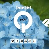 "♫ TRANCE MIX ""QuickTime"" #XV"