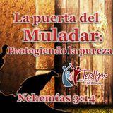 6. La puerta del Muladar, asegurando la pureza