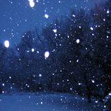 2013 Fall/Winter Idm Mix