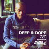 Deep Ambient House Music DJ Mix by JaBig - DEEP & DOPE 257