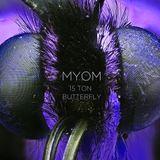 Myom – 15 Ton Butterfly (Boom Tschak Podcast #17)