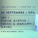 CEY @ Symetrie #2 By Celadopole, OPA, Paris, 260914