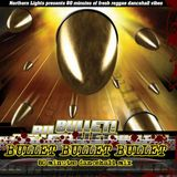 Northern Lights MixCD 2006 - Bullet, Bullet, Bullet, by terryB1973