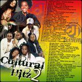 DJ Kenny - Cultural Hitz Vol. 2 (2008 Mix CD)