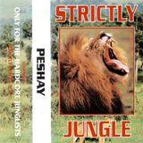 Peshay - Strictly Jungle @ Euphoria 111195 (Side 1)