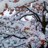 Drum´n´Bass Winter Mix 2010