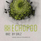 [ECHOPOD 002] Echogarden Podcast 002 by Salz