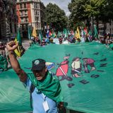 VII Conferencia de la Vía Campesina - Carlos Vicente de GRAIN (31-07-17)