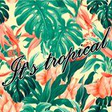It's tropical vol.7