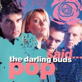 Andrea Lewis  (The Darling Buds) interview with Mark Watkins (13 July, 2015)