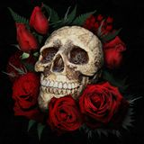 House Mix 2 2015 Deep-Rose