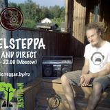 Rebelsteppa @ Bushtown Studio - Dubranach 30.01.14