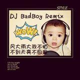DJ BaDBoY REMIX 2015 vol:1(风大雨大我不怕 不到天亮不回家)
