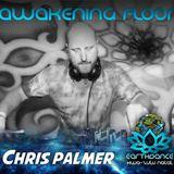 Chris Palmer Earthdance KZN Psy