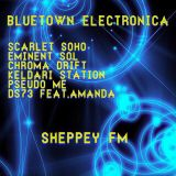 Bluetown Electronica live show 01.02.15