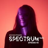Joris Voorn Presents: Spectrum Radio 115
