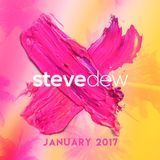 Steve Dew - January 2017