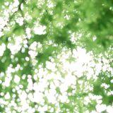 Frankfurt/Tokyo Spring Mix April 2014 Feat. Yoko Kanno