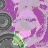Latin & tropical Bass Vol 1 - Petardo