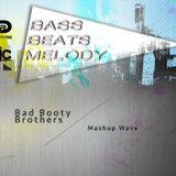 Bad Booty Brothers - Mashup Wave Vol. 12
