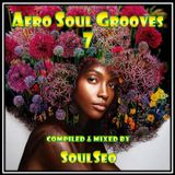 Afro Soul Grooves 7