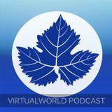 Virtualworld Podcast 002