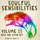 Soulful Sensibilities Vol. 25