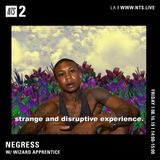 Negress w/ Wizard Apprentice - 16th August 2019