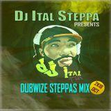Dj Ital Steppa presents Dubwize Steppas Mix 2K18OCT