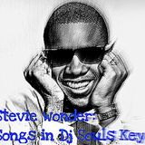 STEVIE WONDER: SONGS IN DJ SOUL'S KEY