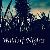 Waldorf Nights #1 - Nocturnal Sessions