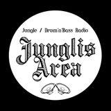 Junglis'Area Show 035 - 20170114 - JungleRaiders Radio Session