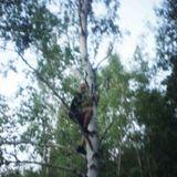 #101. Nápad - Jak vejść na drzewo? - 2013.11.09
