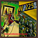 THE BRONX COLLECTION DJ LARRY LOVE