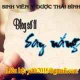 Số 11 - Say nắng - BlogRadio Sinh viên ĐH Y Dược Thái Bình