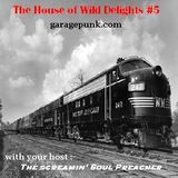 The House of Wild Delights episode 5