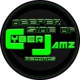 Deeper Side Of CyberJamz Records Remix Vol.1 (Baby Powder Remix) 2018 Mix By Dj Punch