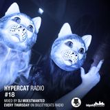 Hypercat Radio #18 - 29.01.2015 / BigCityBeats Radio - Mixed by DJ Moestwanted