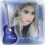 Never Let Me Go - FT. Sandee