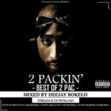 BEST OF 2 PAC MIXX - DJ BOKELO
