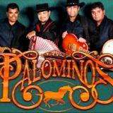 Smooth Palominos Mix