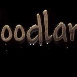 BACK IN TIME: WOODLAND Pristava 2015 DJ Contest - BACK IN TIME: DJ Kev-O
