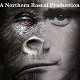 Phil Collins - A Northern Rascal Production (V2)