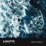 Mantis Radio 293 + Dr Schmidt