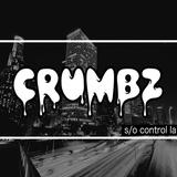 Crumbz In Control