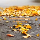 Herbststimmung in Hamburg