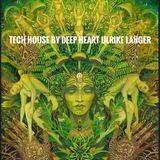 Tech House 9/17 by Deep Heart Ulrike Langer